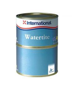 Masilla Epoxi Watertite