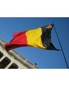 Belgian flag with shield 30 x 45 cm